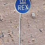 REX Anstecknadel, Rex Motorenwerk München 50er Jahre, original, ungetragen aus Händlernachlaß